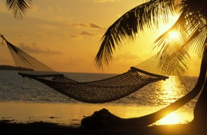Hammock at a Tropical Beach