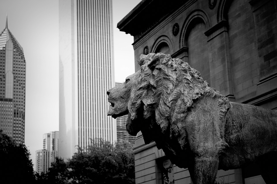 art-institute-of-chicago-illinois-photo