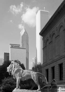 chicago-photos-art-institute-lion