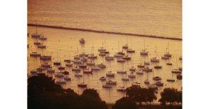Chicago's Harbor