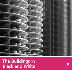 The Buildings of Chicago in Black and White