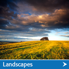 landscape photographs