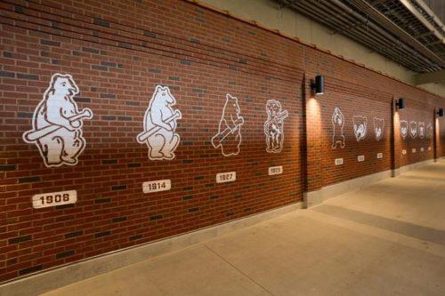 Cubs Mascot Illustrations Wall Graphics