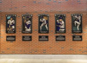 Chicago Cubs Hall of Fame Illustrations