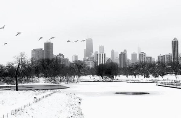 Chicago Winter Photos