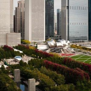 Downtown Chicago Photograph
